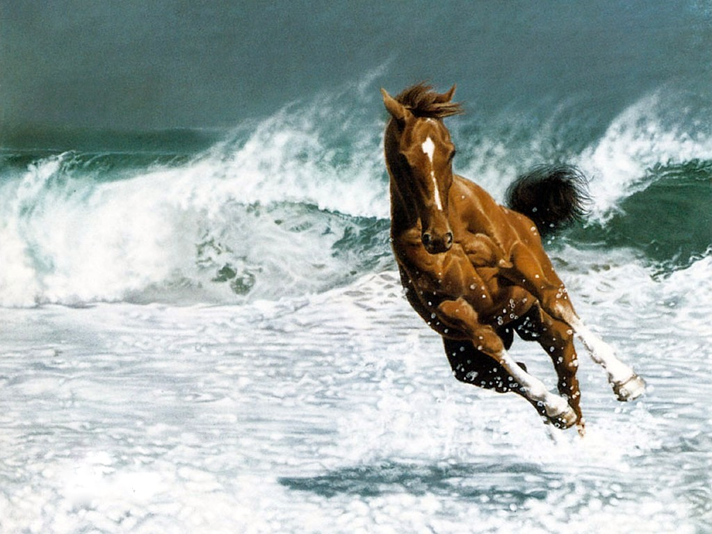 картинки на рабочий стол лошади