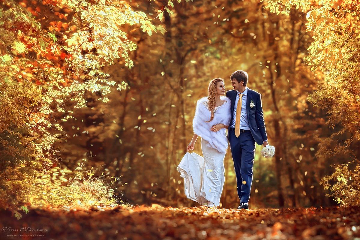 Свадьбы золотой осенью