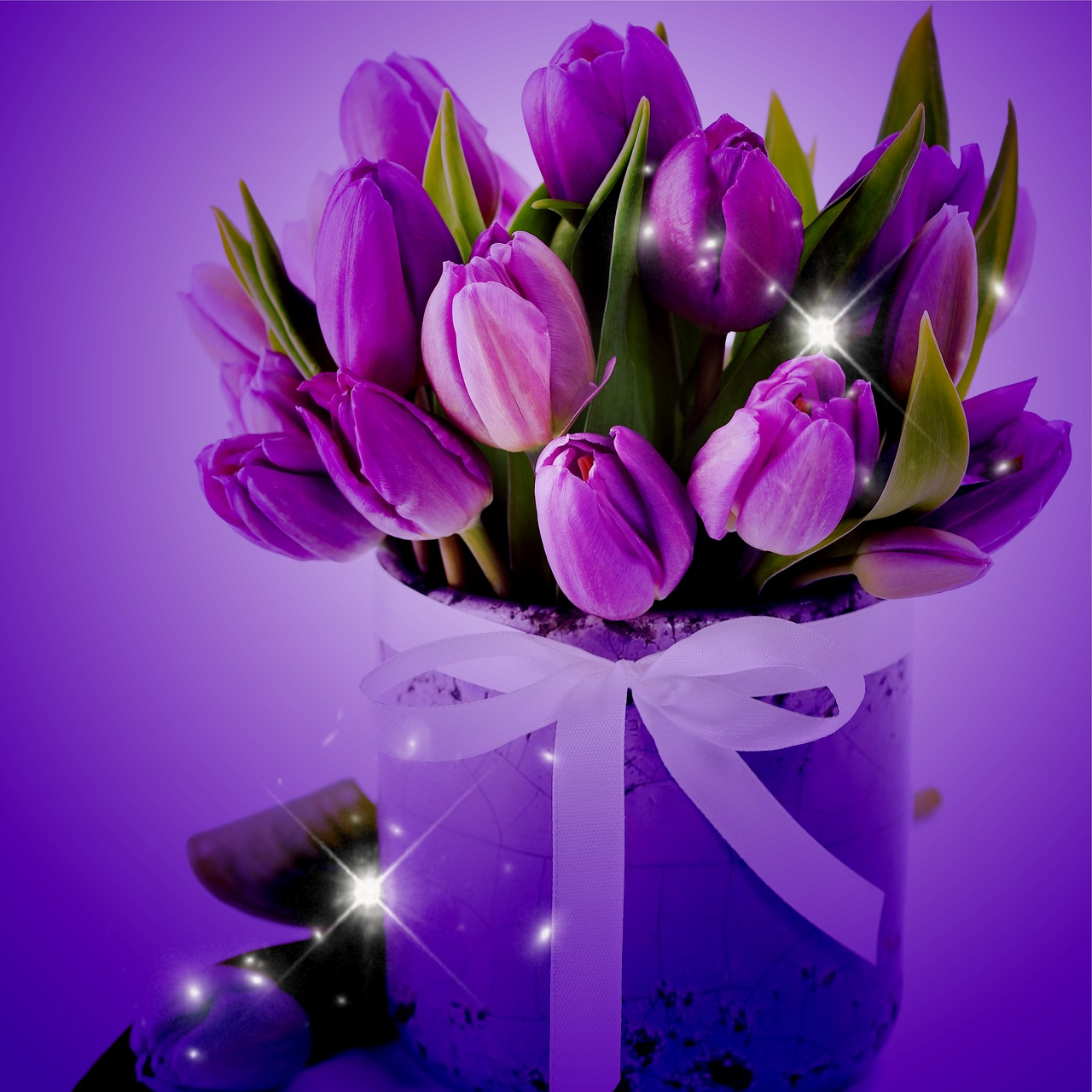 Тюльпаны обои на телефон