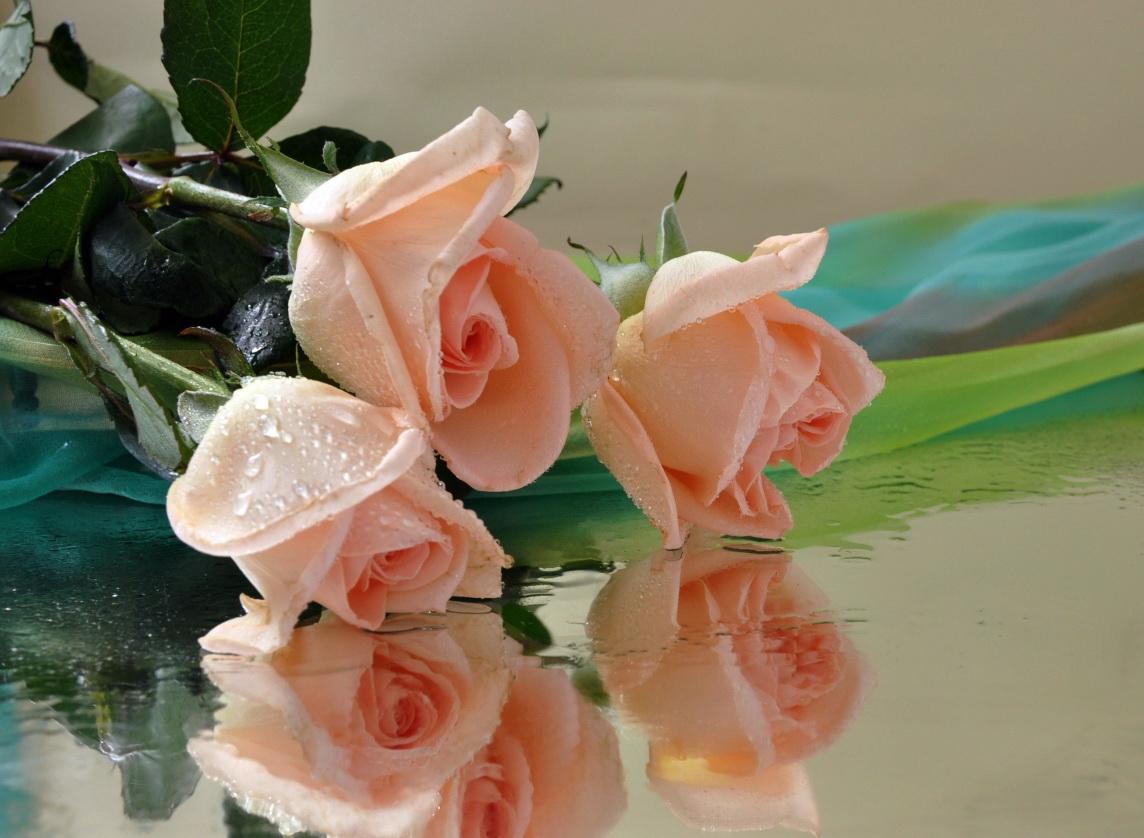 Открытка роза с каплями
