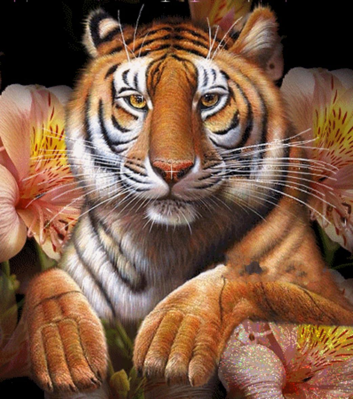Поздравление с днем года тигра