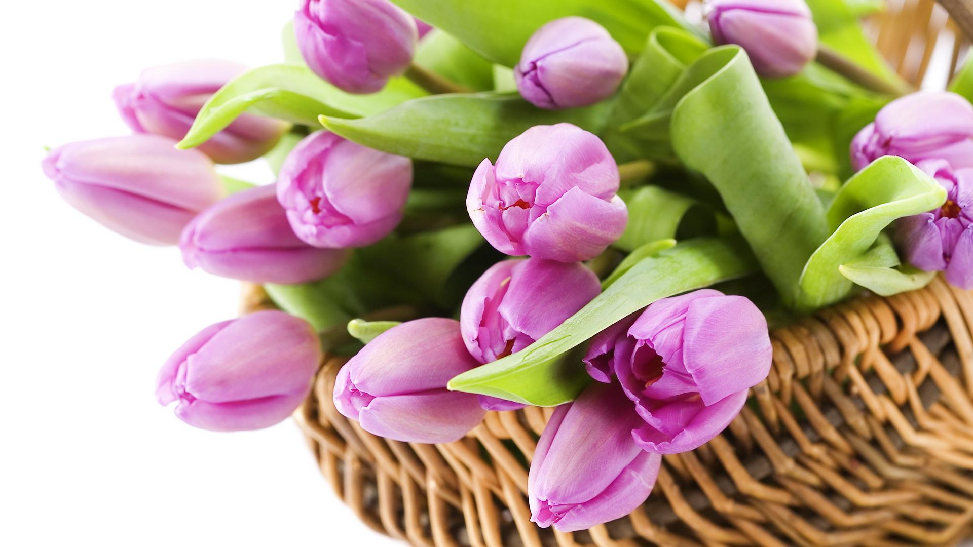 8 марта. картинки. цветы. открытки