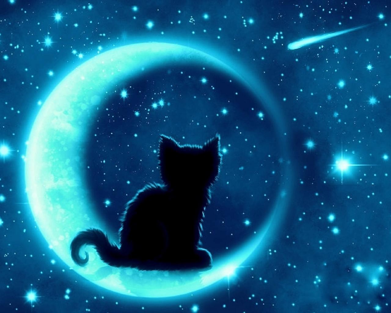 луна кот обои на рабочий стол № 573663 загрузить