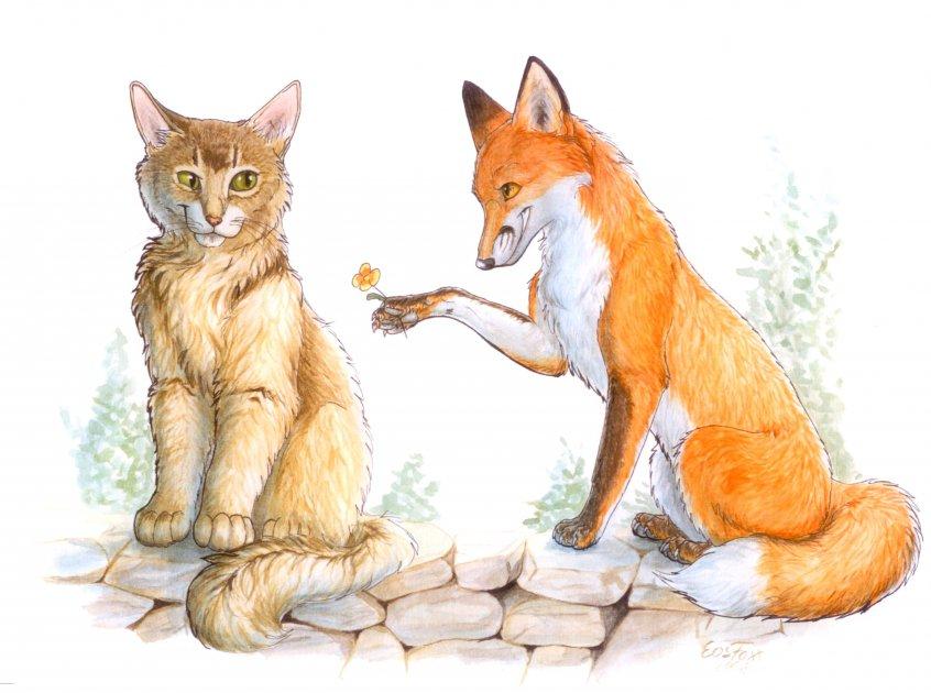 ловит ли лиса кошек