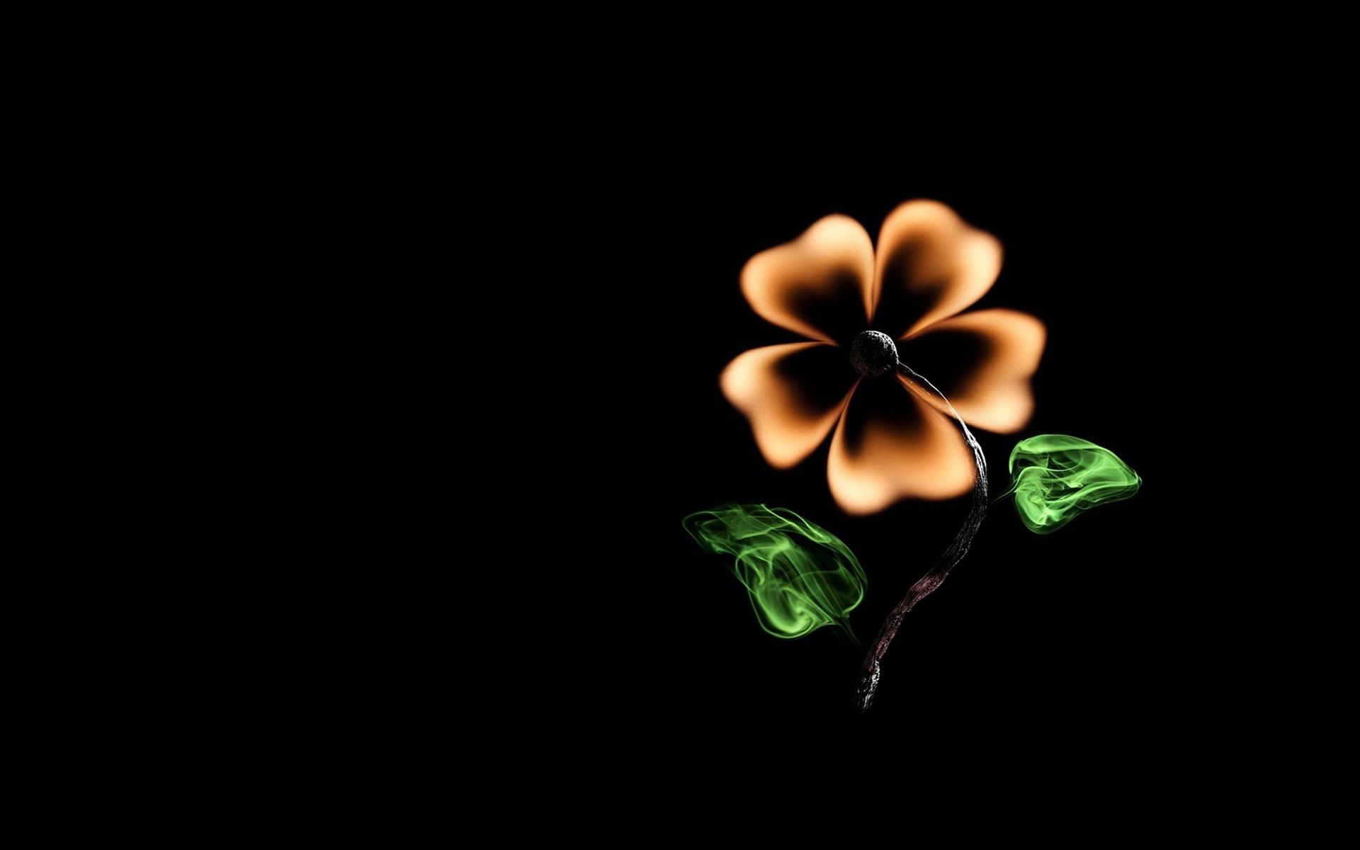 Обои для рабочего стола креативные цветы