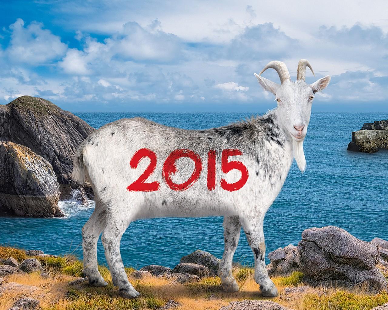 год козы обои на рабочий стол № 528501 загрузить