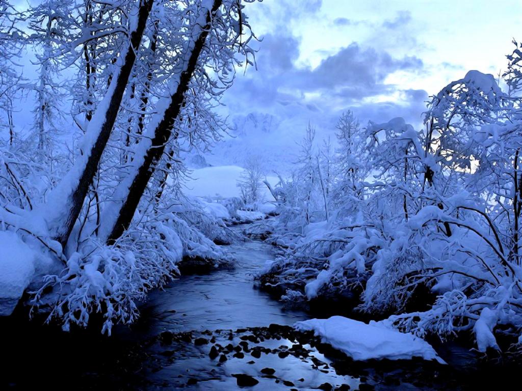 обои на рабочий стол зима скачать бесплатно 1280х1024 зима новый год